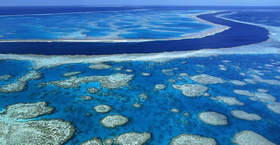 Great Barrier Marine Park Australia